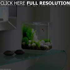 interior fetching aquarium modern design and ideas corner fish
