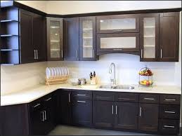 Traditional Dark Wood Kitchen Cabinets Coolest Dark Wood Kitchen Cabinets 15 Concerning Remodel Interior