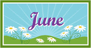 The Month Of June Flower - blog categories