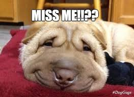 I Miss You Meme Funny - 20 funny i miss you memes for when you miss someone so bad word
