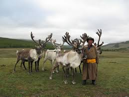 preserving mongolian culture at the edge of the arctic