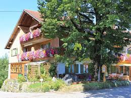 Parkhotel Bad Bayersoien Apartment Blumenhof Am See 2 Bayersoien Germany Booking Com