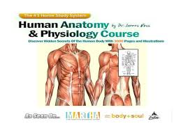 What Is Anatomy And Physiology Class Human Anatomy U0026 Physiology Study Course Authorstream