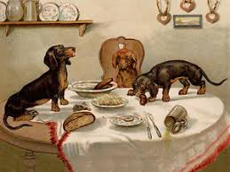 dogs at dinner table dachshund charming dog greetings note card cute naughty dogs on