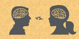 Anatomy Difference Between Male And Female Neuroscience Male And Female Brain Biopsychology Breakthroughs