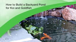 how to build a backyard pond for koi and goldfish design and