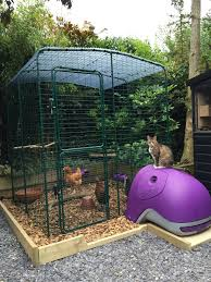 modern housing for urban chickens coops chicken coup and small