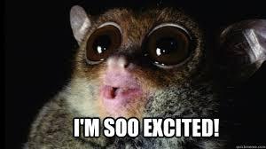Im So Excited Meme - i m soo excited im so excited quickmeme