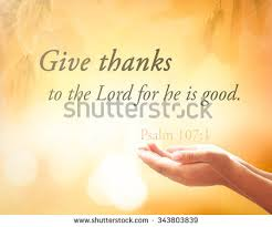praying text give thanks lord stock photo 343803839