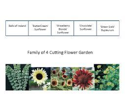 flower garden plan plans foliage layout plant list the old farmer