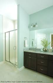 Master Bedroom And Bathroom Ideas Colors 605 Best Tips For Your Bathroom Images On Pinterest Bathroom