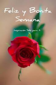 imagenes de feliz inicio de semana con rosas feliz y bonita semana imagen 9239 imágenes cool