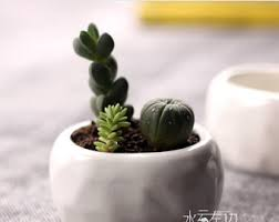 Ceramic Succulent Planter by Ceramic Succulent Etsy