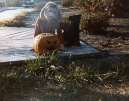 halloween city corbin ky halloween 1987