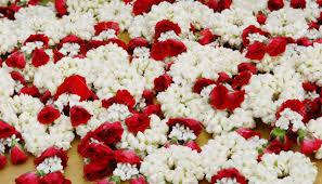 indian wedding garlands indian garland stock photos royalty free indian garland images