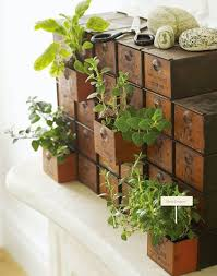 indoor kitchen garden ideas 18 indoor herb garden ideas page 2 of 3