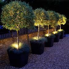 front garden design wpid4783 front garden design gstm015 nicola stocken 400x400 jpg
