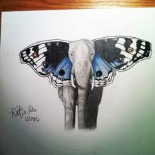 elephant with butterfly ears photo about abstract