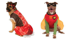 Dog Halloween Costumes 10 Large Dog Halloween Costumes 2017