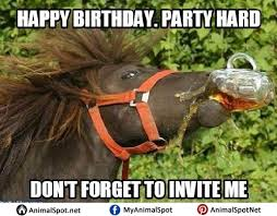 Horse Birthday Meme - happy birthday meme horse memeshappy com