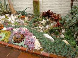 Succulent Gardens Ideas Reader Photos A Gem Of A Succulent Garden Innovation How To Design