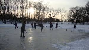 backyard pond hockey outdoor furniture design and ideas