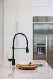 danze parma kitchen faucet danze opulence kitchen faucet thedailygraff