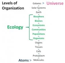 biosphere earth science pinterest articles earth science