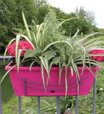 balkon blumenkasten mit halterung blumenkasten pink mit halterung im greenbop shop kaufen