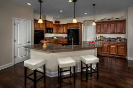 Kitchen Cabinets In Jacksonville Fl New Homes For Sale In Jacksonville Fl Bartram Creek Executive