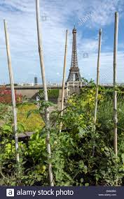 vegetable garden garden with view of the eiffel tower roof