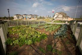 affordable homes to build austin area development aims to make green living more affordable