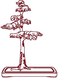 bonsai cypress tree embroidery design