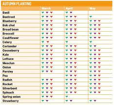Texas Vegetable Garden Calendar by Stylish Vegetable Garden Planting Guide Vegcalendarsmall