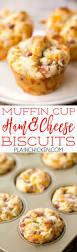 best 25 mini muffin pan ideas on pinterest oreo cheesecake