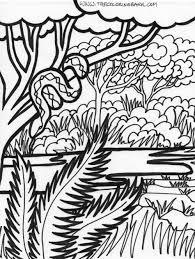 jungle coloring sheets page jungle scene snake fury sheet