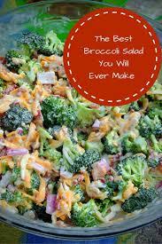 Pasta Salad Recipies by Best 25 Pasta Salad Recipes Ideas On Pinterest Pasta Salad