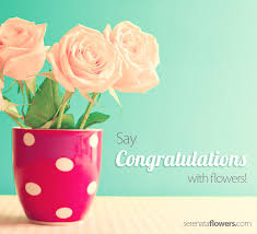 congratulations flowers congratulations with flowers