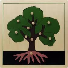 montessori materials parts of a tree puzzle