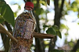 soda bottle bird feeder here comes the sun