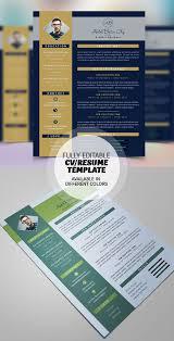 8 best resume cv images on pinterest resume cv cv ideas and cv