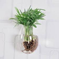 Wall Mounted Glass Flower Vases Creative Gift Ideas Home Decor Wall Mounted Water Plants Pot Glass