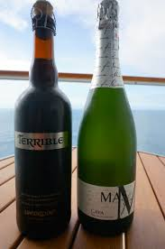 10 proven ways to drink for cheap on a cruise ship