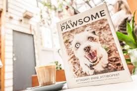 dog coffee table books the pawsome forget humans of new york meet the dogs of melbourne