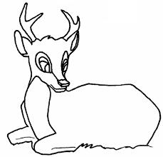 coulorage dessin et coloriage de faon imprimer dessincoloriage