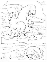arctic animal coloring pages with regard to really encourage in