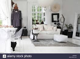 white interior of one room apartment with black cat stock photo