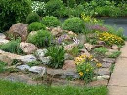 Indoor Rock Garden Ideas Small Rock Garden Ideas Ideas For Landscaping A Small Garden