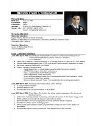Standard Resume Template Examples Of Resumes A Cv Professional Example Throughout 81 Cool