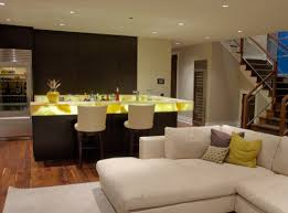 Home Basement Ideas Basement Remodeling Photo Gallery Basement Finishing Photo